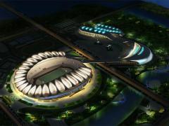 安庆体育中心-体育照明工程
