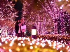 30万个LED灯给东京新宿夜景镀上樱花色