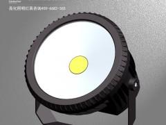 DG5216B-LED投光灯/COB投光灯厂/投光灯亮化工程