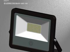 DG5212-感应LED投光灯/LED泛投光灯/调光LED投光灯